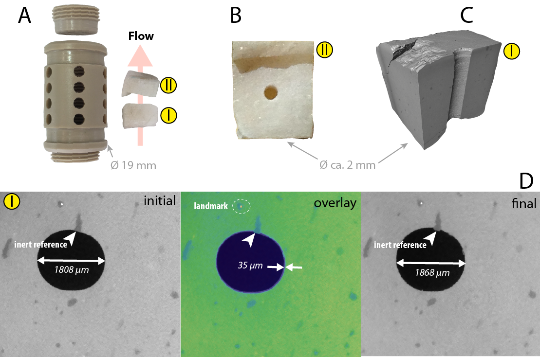 Crystal surface reactivity analysis of marble in a perforated PEEK chamber