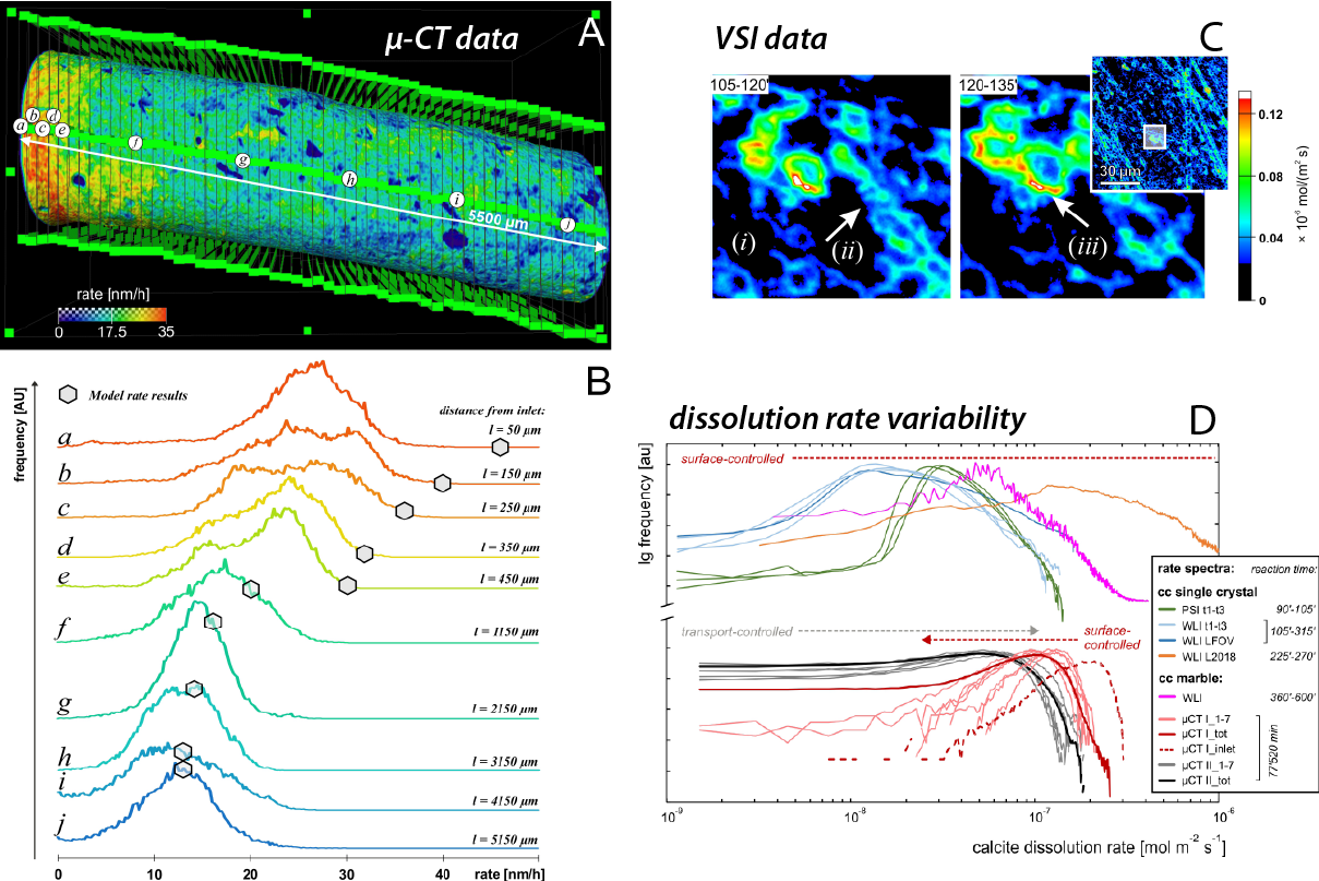 Combined approach of X-ray micro-computed tomography (µ-CT) and vertical scanning interferometry (VSI) to analyse crystal surface reactivity