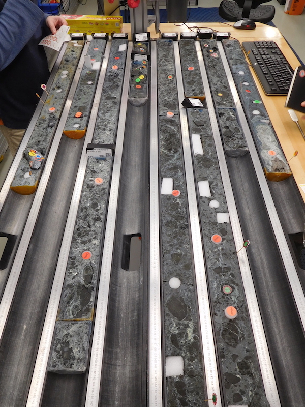 Drillcores with bluish serpentinite mud and serpentinised ultramafic mantle rock clasts